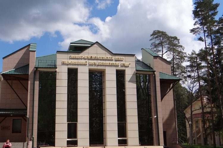 Музей природы. Беловежская пуща