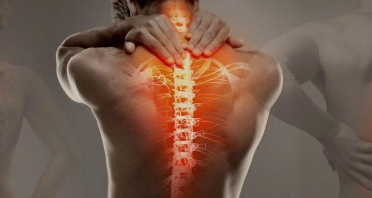 Кинезотерапия-лечение движением. Кинезотерапия в санаториях Беларуссии